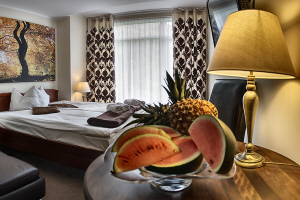 resort SPA hotel in Poland mountains rooms conferences wellness Ustron
